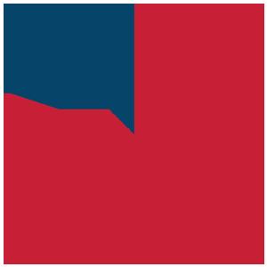 TH Pie Chart